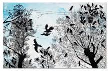 Ptaki_